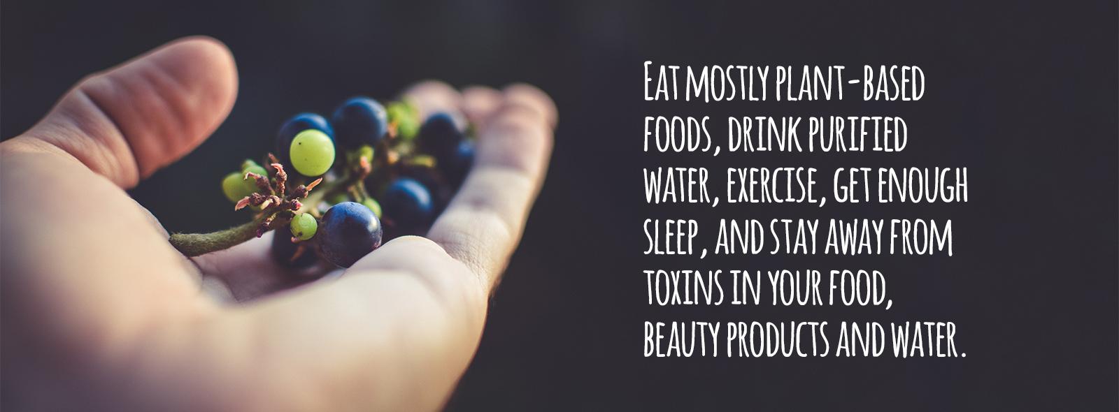 immune-system-diet